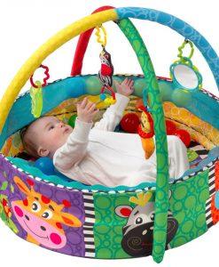 Playgro Ball Babygym